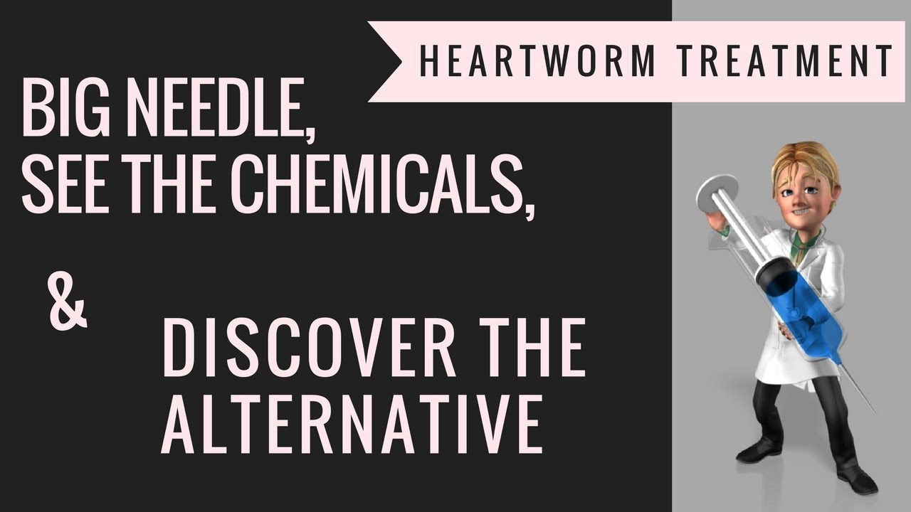 natural heartworm treatment. Heartworm Prevention|15 Yr Proven Natural Treatment A