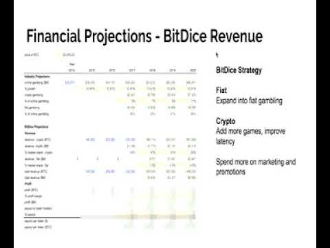 BitDice ICO Financial Projections Walk Through [remake]