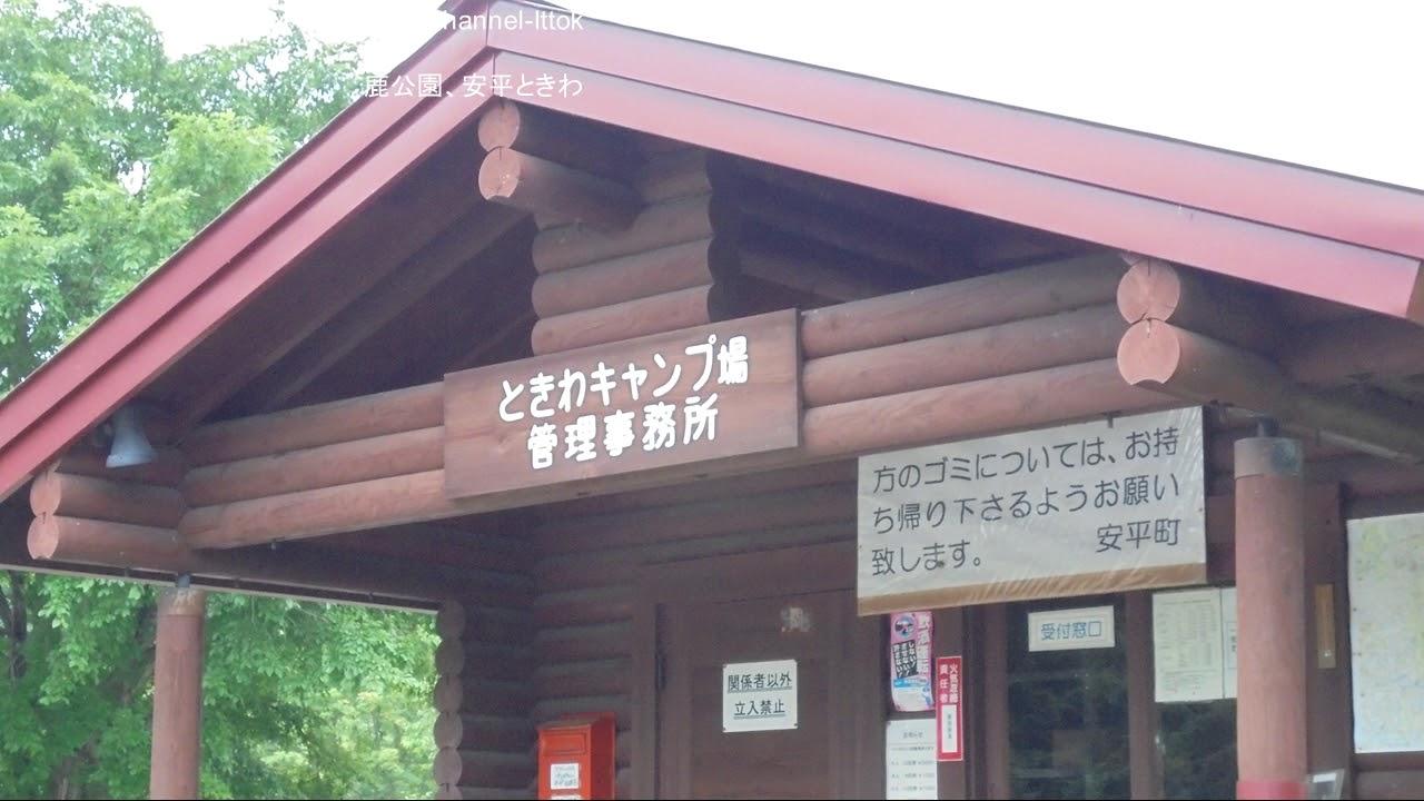 場 安平 キャンプ