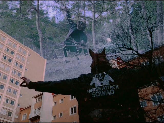 Horse Attack Sqwad -  Kaunis päivä