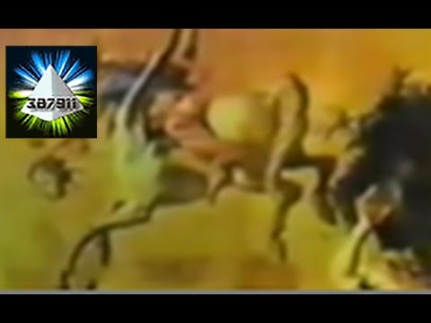 Al Fry Videos ★ Hidden Bible Knowledge Secret Human Origins Conspiracy 👽 Ancient World History