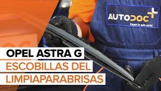 Montaje Escobillas de Limpiaparabrisas delanteras y traseras OPEL ASTRA G Hatchback (F48_, F08_): vídeo gratis