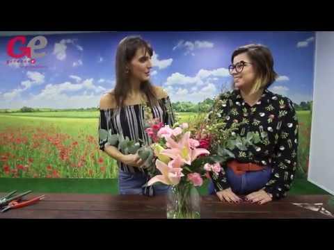 Marina Wentz criou clube de assinatura de flores
