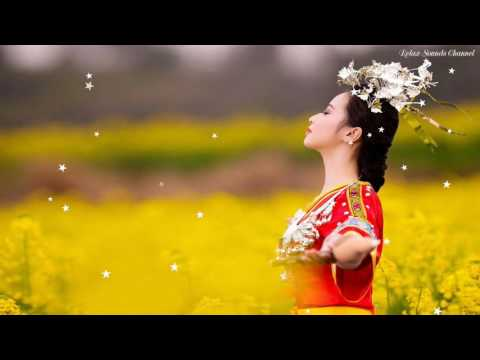1 Hour Relaxing Music   Beautiful Chinese Music - Chinese Tradition Music