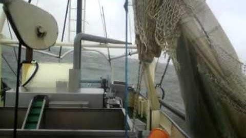 krabbenkutter bei schlecht wetter ,  friedrichskoog