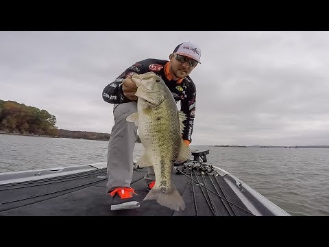 Fall Bite on Kentucky Lake with Zack Birge and Brandon Perkins