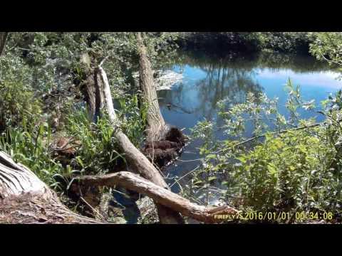 Eddy's  Fishing In Norfolk