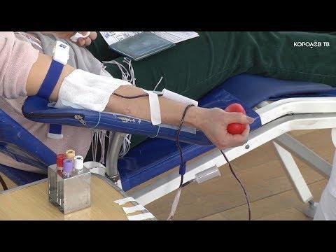 Во время донорской акции королёвцы сдали 53 литра крови