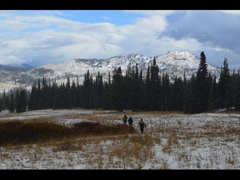 Backpacking Wyoming's Teton Wilderness;  Arizona Creek to the Huckleberry Fire Lookout Tower.