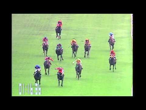 ม้าแข่งสนามไทย ม้าชั้นเมเด้น เที่ยว 1(4ตุลาคม58)