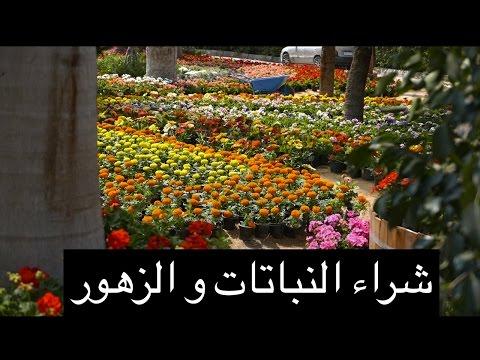 كتاب المتمرد عبد الحليم بدران رابط مباشر