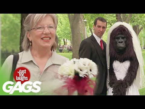 Gorilla Bride, Switching Cars, Jesus Brings Fish Back to Life - Throwback Thursday