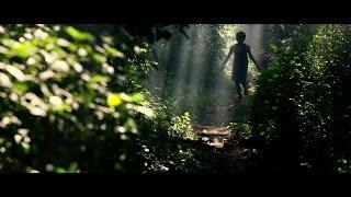 Cinematography Reel 2016 Vijay Kartik Kannan