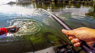 Ловля СОМА на КВОК Рыбалка на сома Сезон Сома Рыба сом на Эхолот Лоуренс 9 ФС