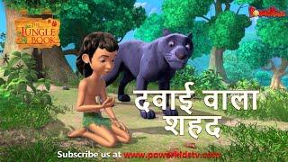 दवाई वाला शहद | हिंदी कहानीयाँ । जंगल बुक | पॉवरकिड्स