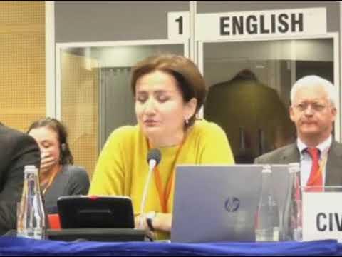 Картинки по запросу Позитивный пример Наджибы Ширинбековой на конференции ОБСЕ в Варшаве