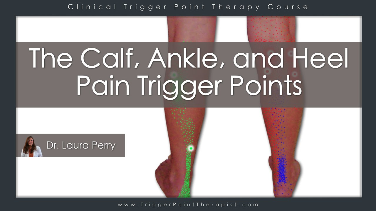 the calf ankle and heel pain trigger points youtube