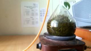 Получение эфирного масла сосны сибирской (проект)(, 2015-12-04T13:57:05.000Z)