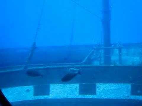 Sunken Boat in Maui