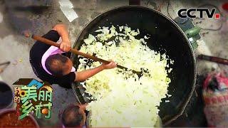 《我的美丽乡村》 20201103 美食带动的旅游村 CCTV农业 - YouTube