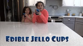 One of Hayley LeBlanc's most viewed videos: Edible Jello Cups, Cooking with Hayley | elleoNyaH