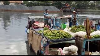 Xóm nghèo miền Tây ở sông Sài Gòn