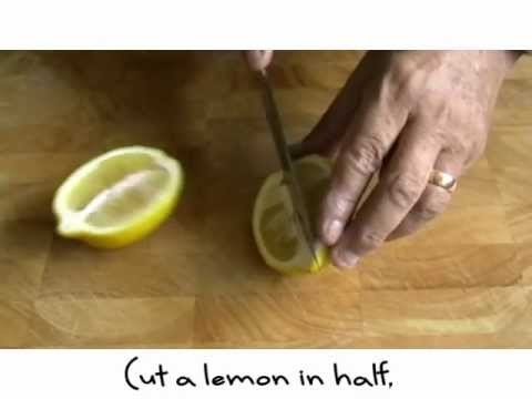 Lemon segments and zest of lemon
