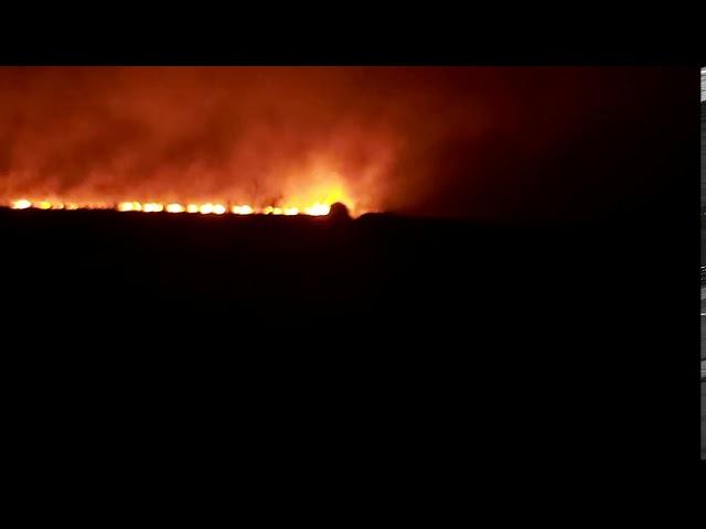 Incendio de campo en Coionia Popular