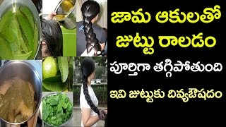 Benefits of Guava Leaves For Hair | Health and Beauty Tips | VTube Telugu