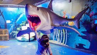 Kids Games at the Aquarium with Sharks! Fishes, Turtles, Birds and More! Lots of Fun for Kids!