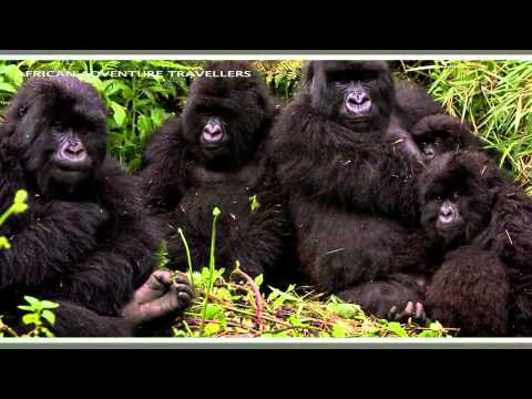 Experience Rwanda with African Adventure travellers