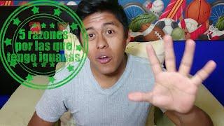 5 razones por las que debes tener una iguana