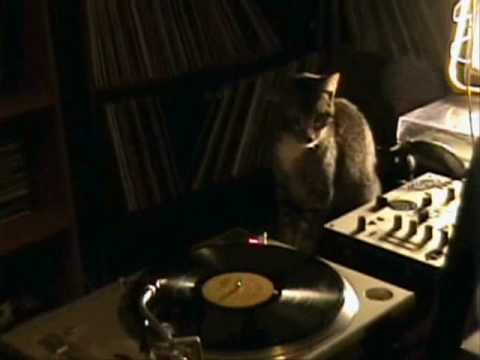 DJ WHISKIEZZZ PLAYS JON LEMAY