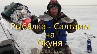 Зимняя рыбалка в палатке на окуня Крутинский район озеро Салтаим 26 02 2021