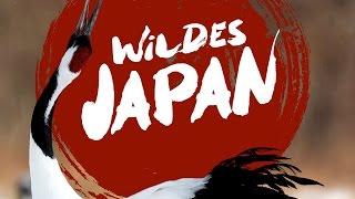 Wildes Japan - Land der tausend Inseln - Trailer [HD] Deutsch / German