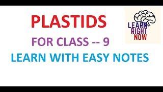 PLASTIDS, For Class 09