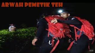 Misteri Arwah Pemetik Teh! | Ekspedisi Merah | ANTV Eps 51