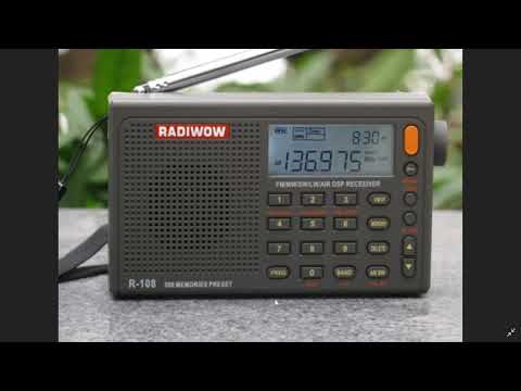 Winners Best Radios 2019 XHDATA D808 Radiwow R108 Protable Receivers