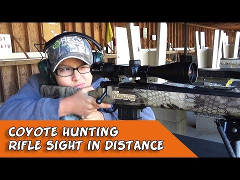 Coyote Hunting - Rifle Sight In Distance