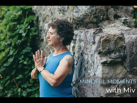 Mindful Moments III