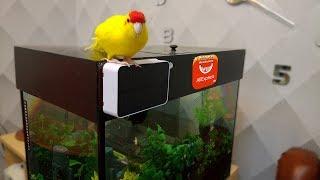 Компрессор для аквариума на солнечной батарее с Aliexpress