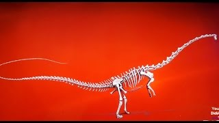 The Dubai Mall Dinosaurier-Skelett Dubai Dino Exhibit The Souk Dome Dinosaur Fossil in dubai mall