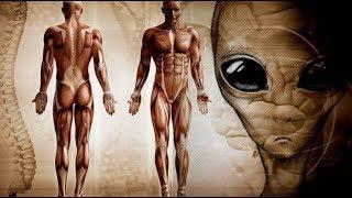 Факты которые доказывают связь человека с пришельцами. Новая трактовка  учёных. Док. фильм.