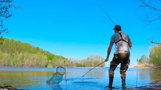 Фрикцион трещит Бешеный КАРАСЬ давит Ловля крупного карася на фидер Рыбалка 2020