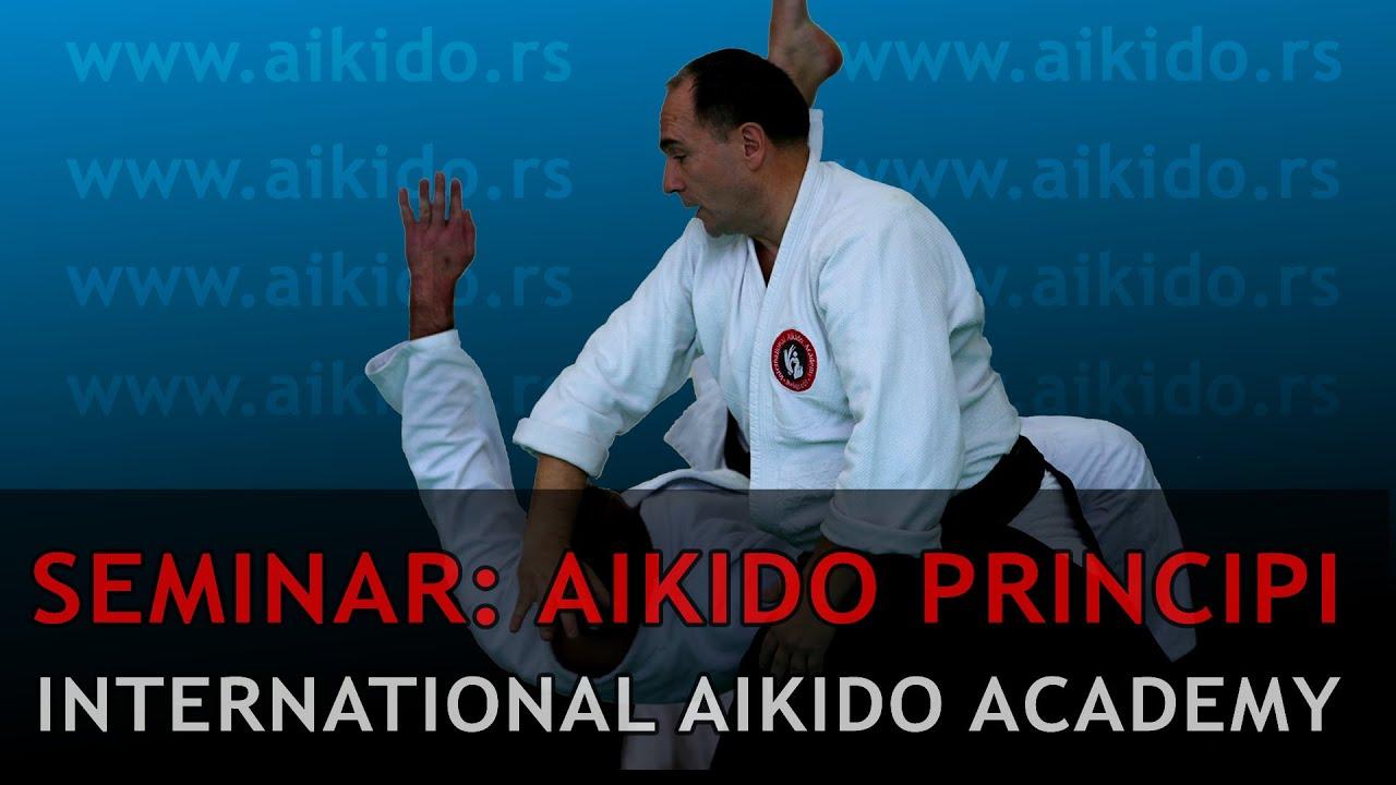 Aikido principi: Seminar | Internacionalna Aikido Akademija