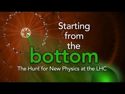 Public Lecture | Starting From the Bottom: The Hunt for New Physics at the LHC