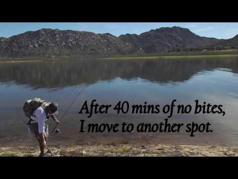 Fishing Lake Perris