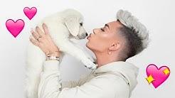 Adopting A Puppy!! 🐶