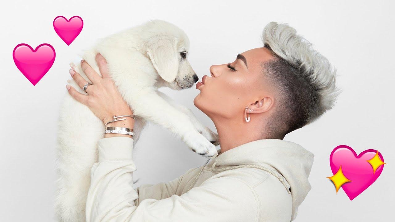 Adopting A Puppy!! 🐶 #1