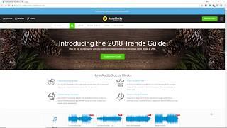 +100,000 SAMPLES - La gigantesca librería de AudioBlocks - Review